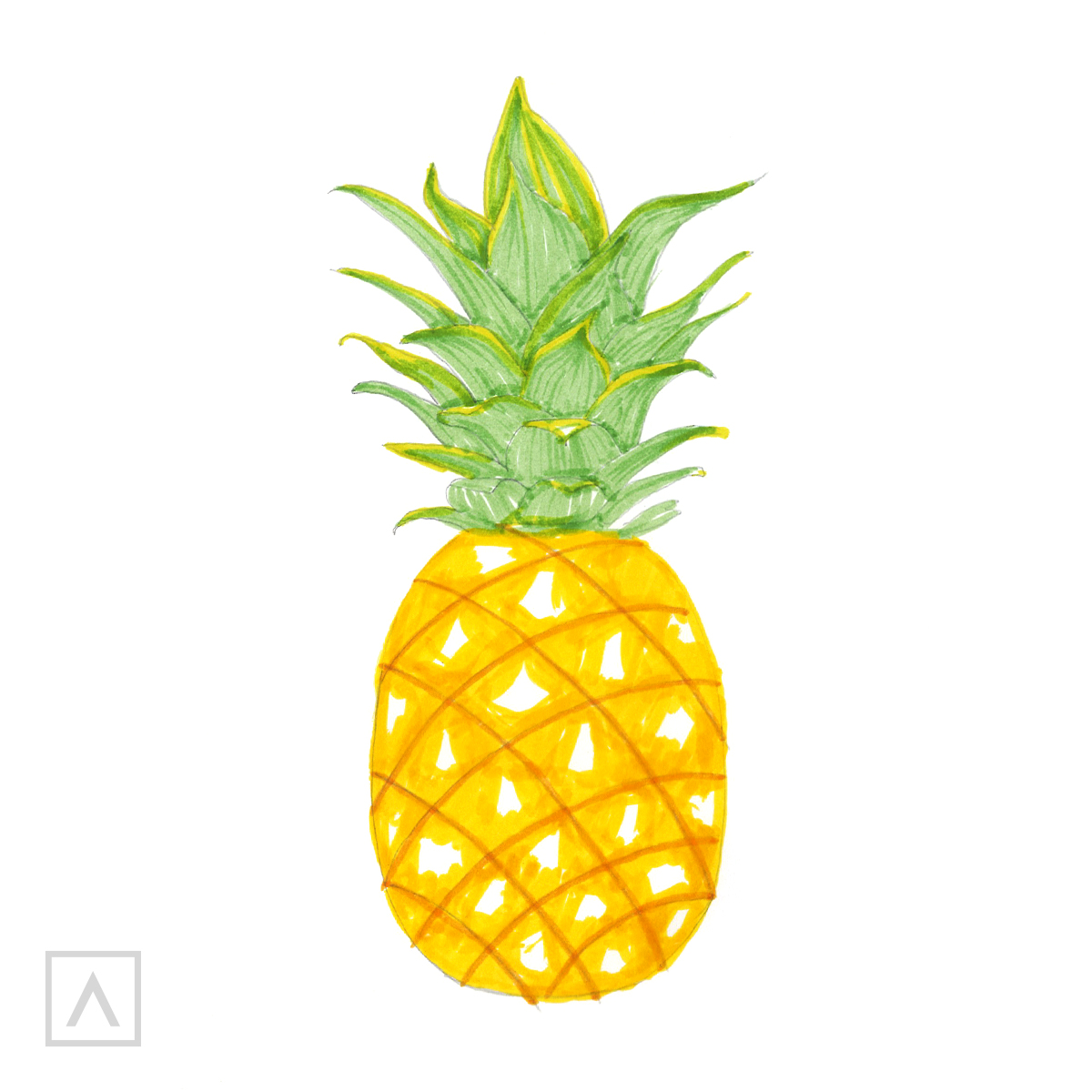 Pineapple drawing. Step 6