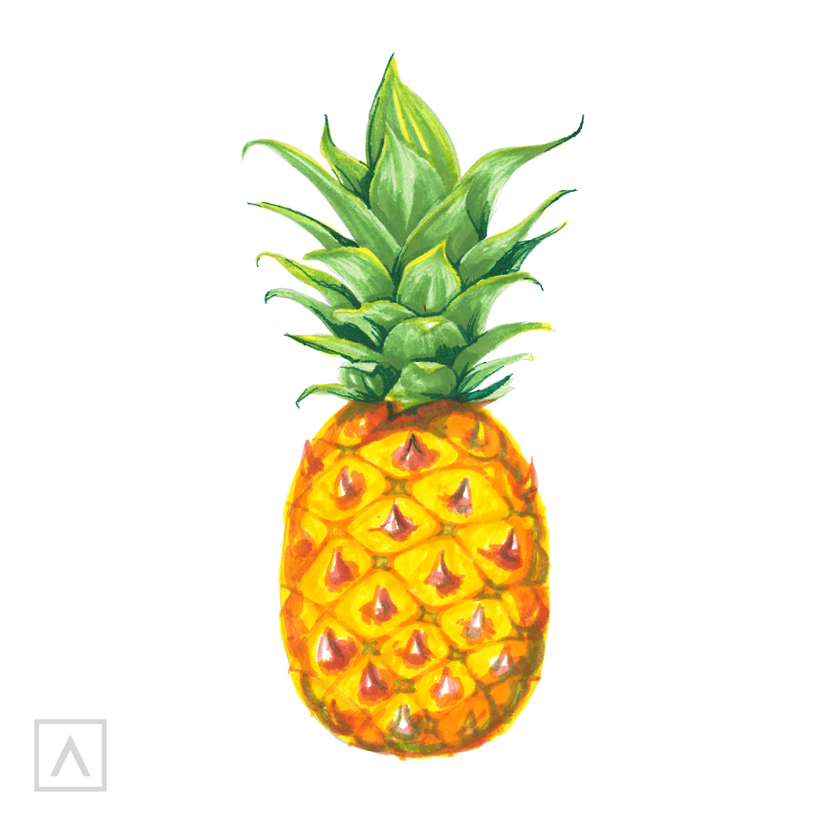 Pineapple drawing. Step 8