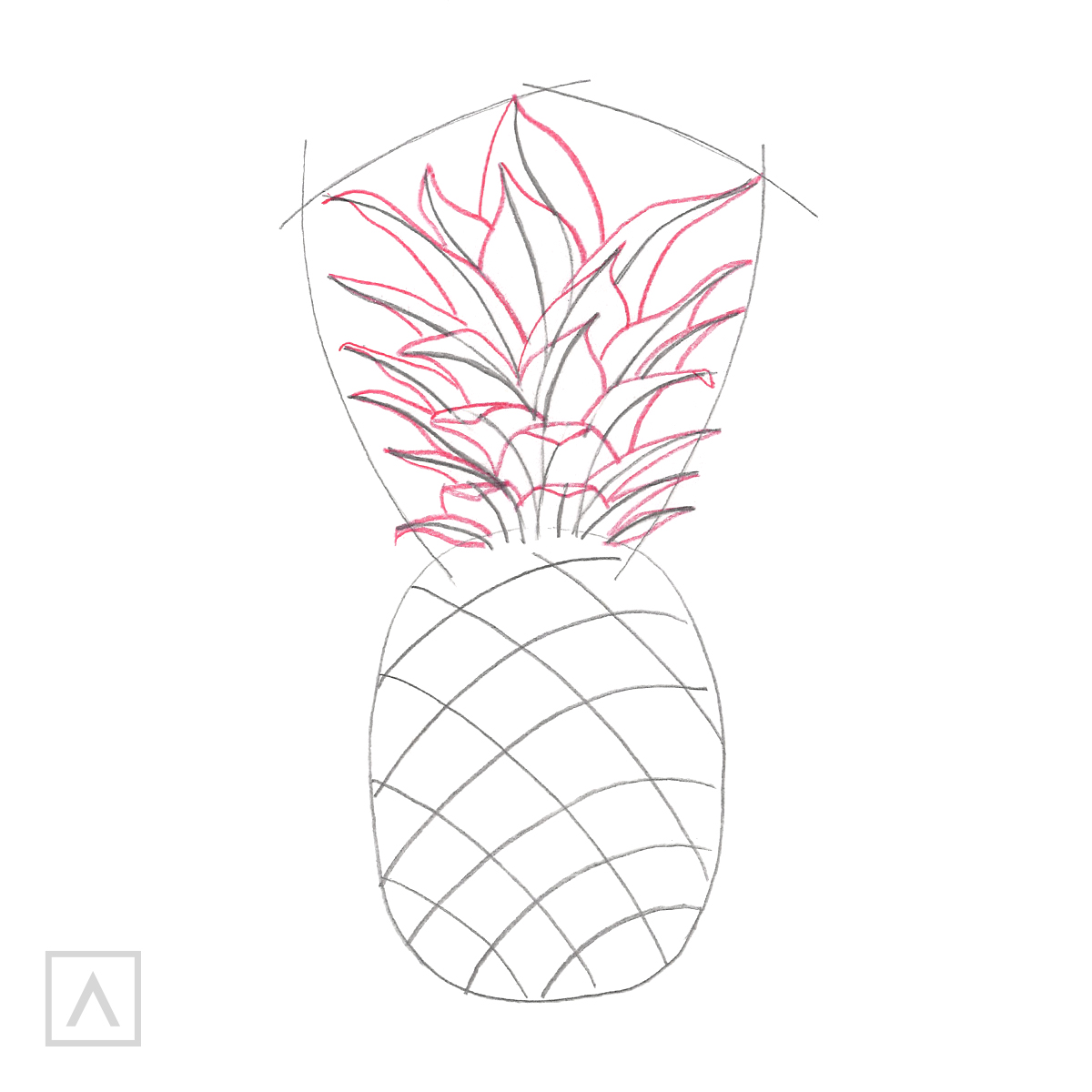Pineapple drawing. Step 3