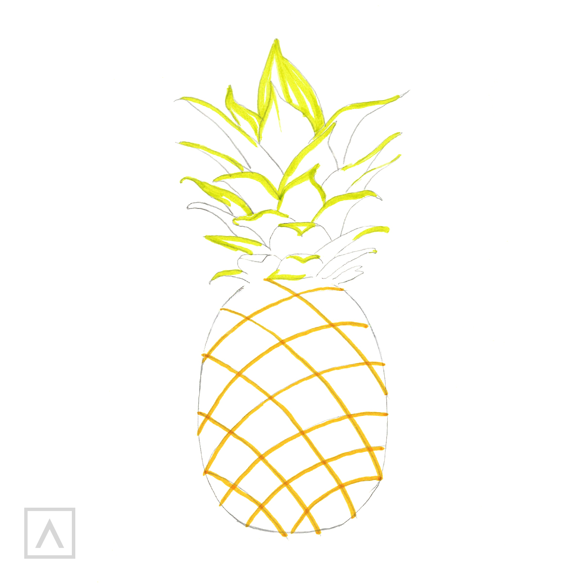 Pineapple drawing. Step 5
