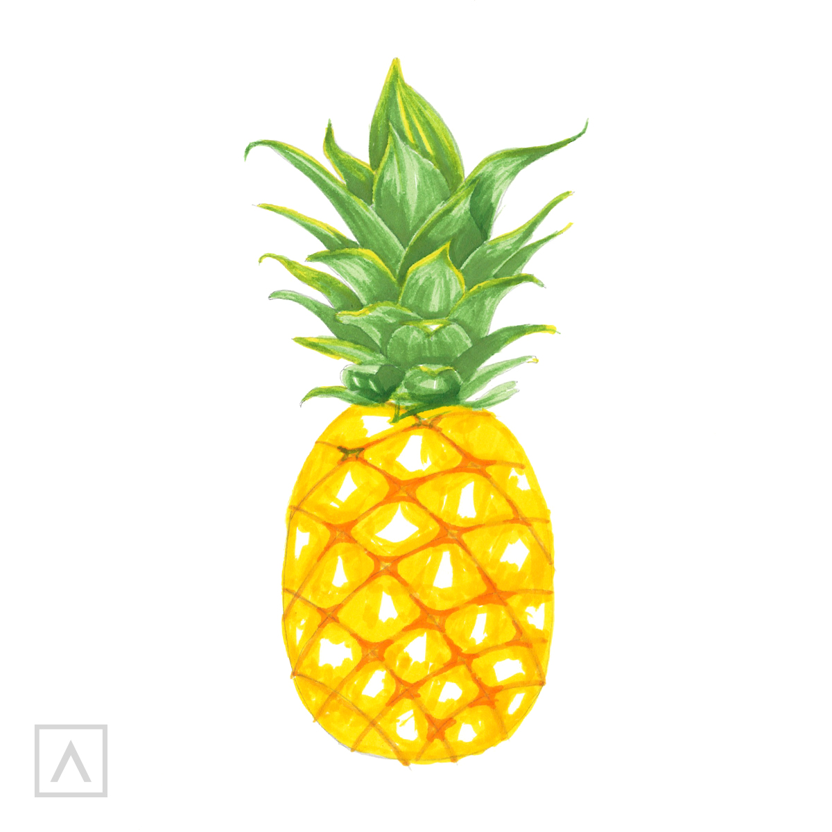 Pineapple drawing. Step 7