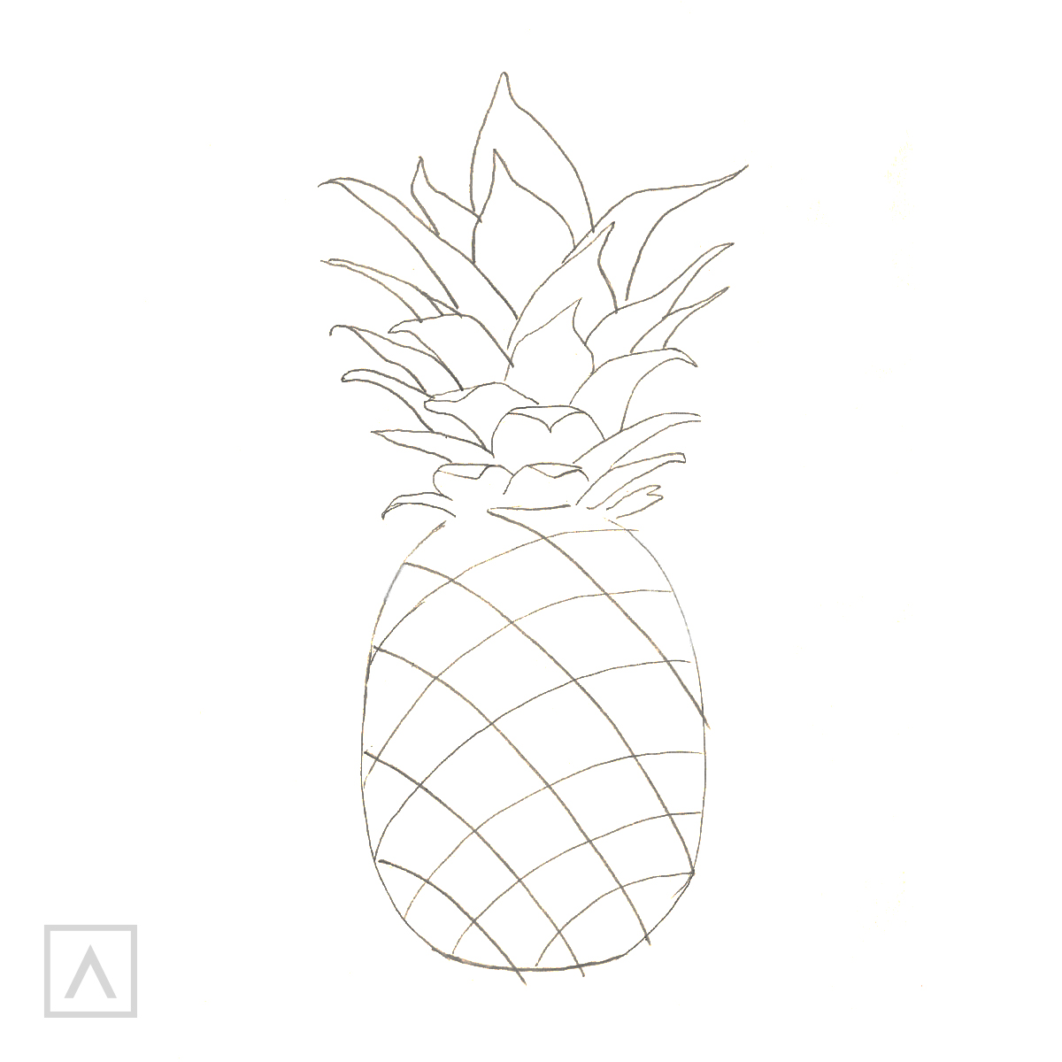 Pineapple drawing. Step 4