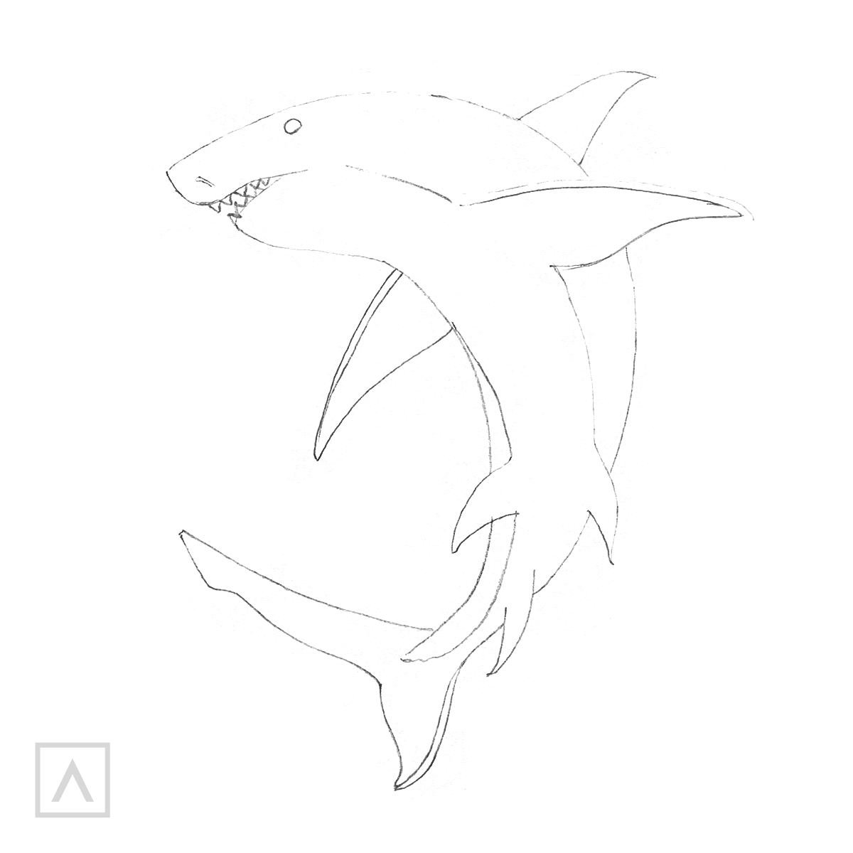 Shark Drawing Step 5
