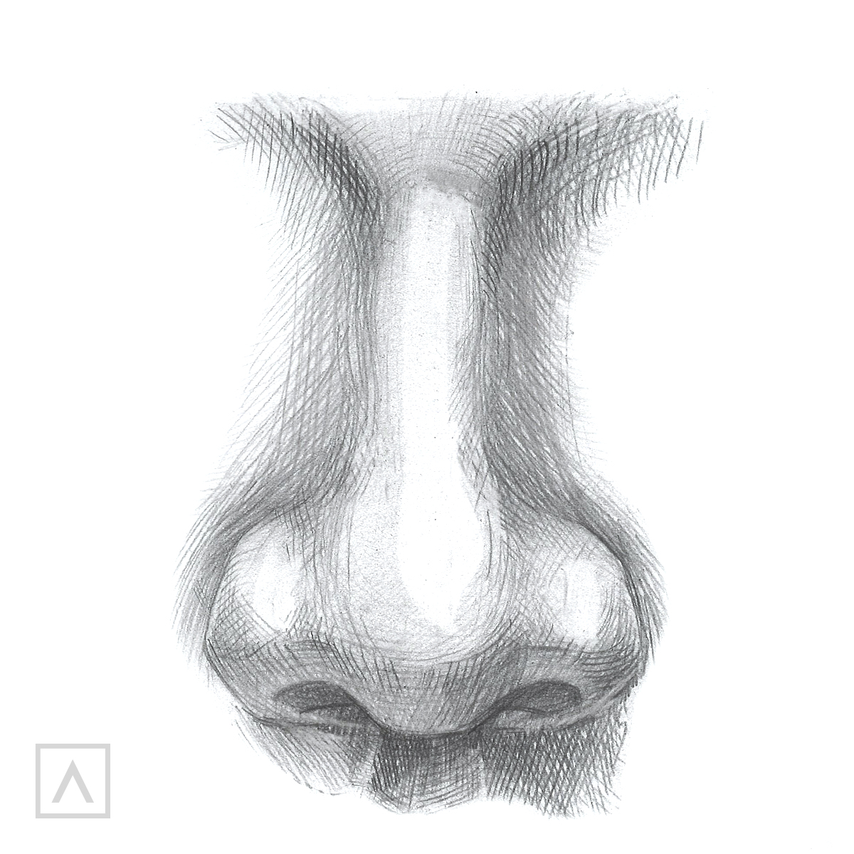 Nose drawing Step 5