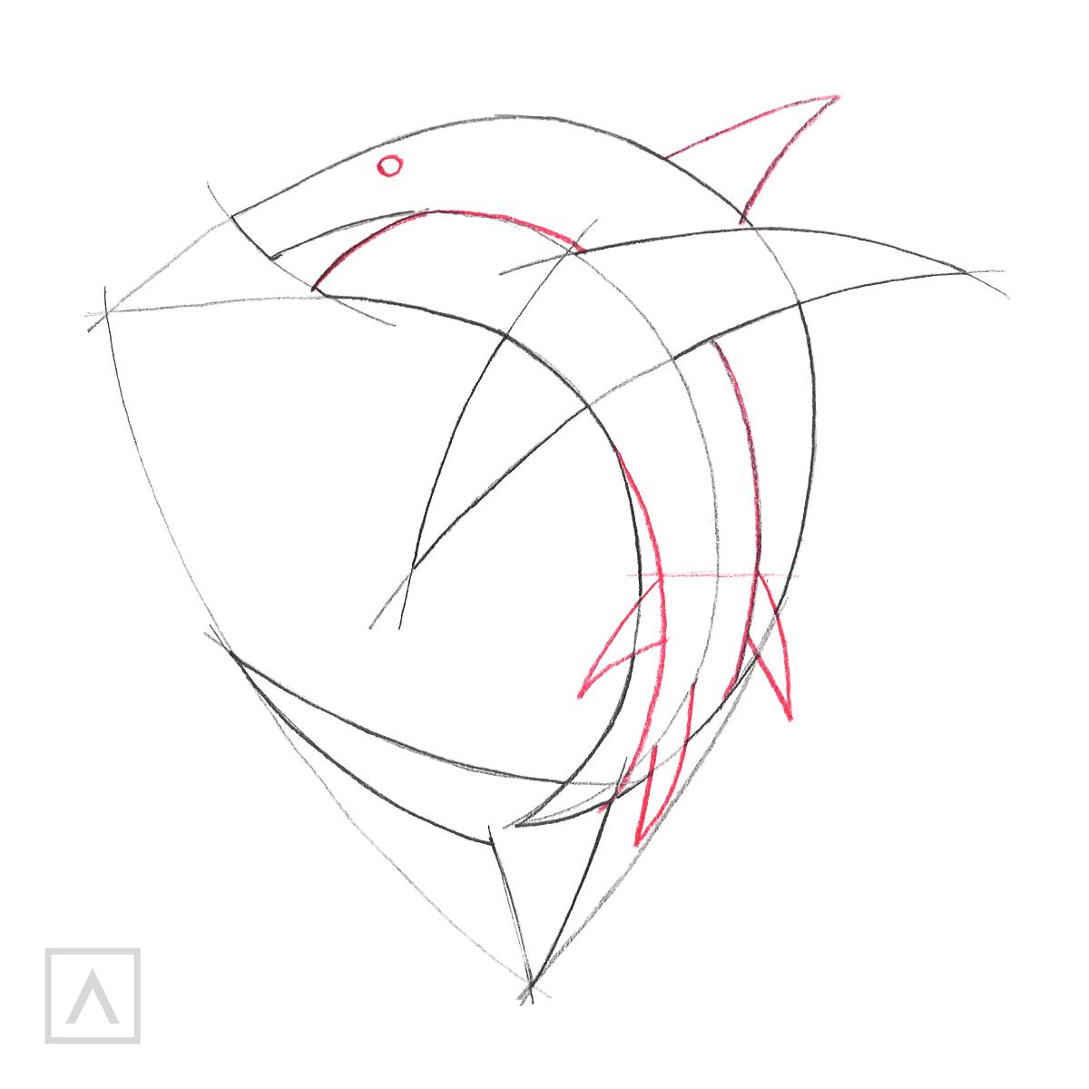 Shark Drawing Step 3
