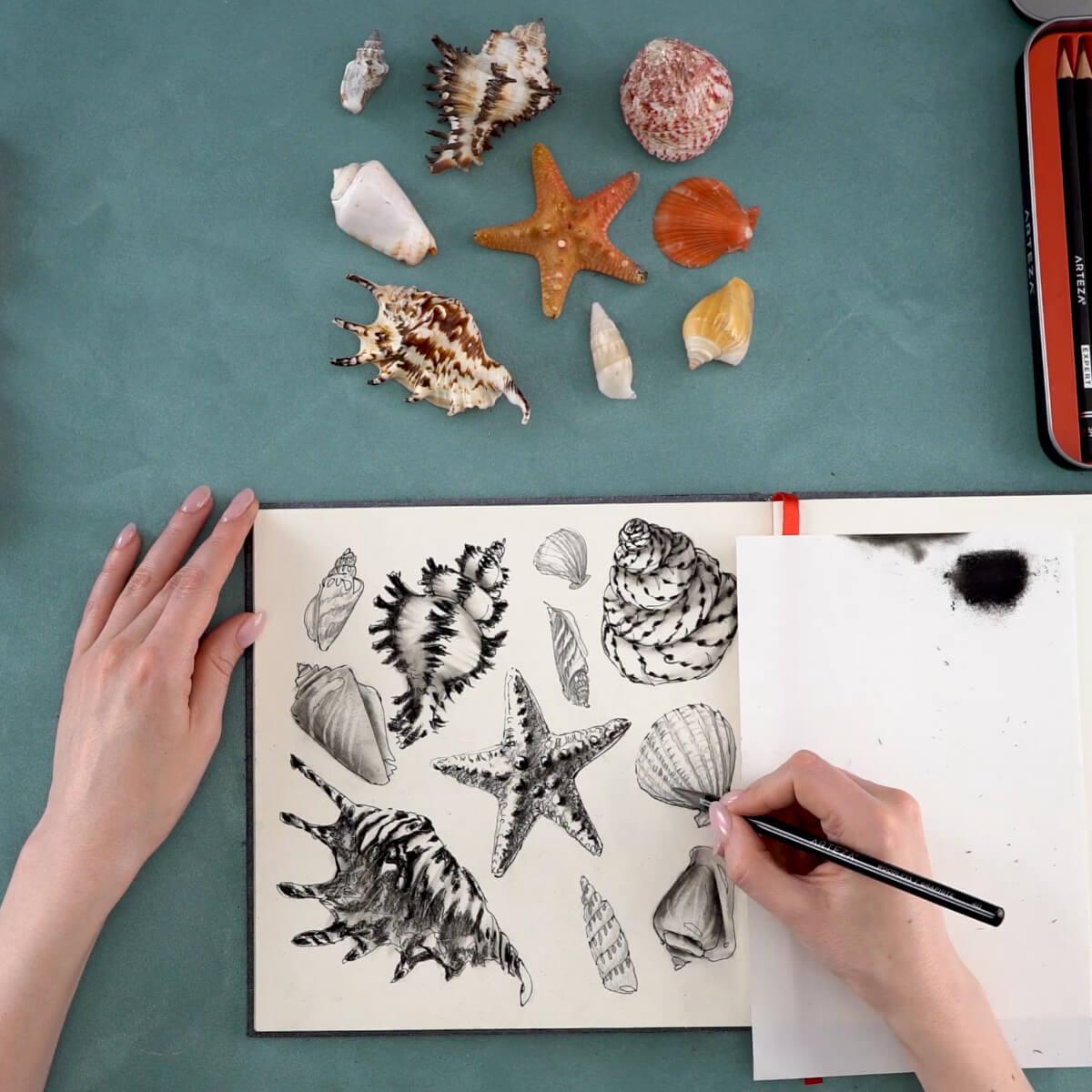 Seashell Step 10