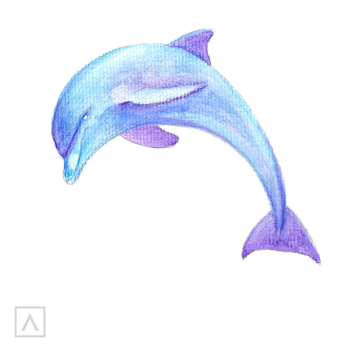 How to Draw a Dolphin - Step 5