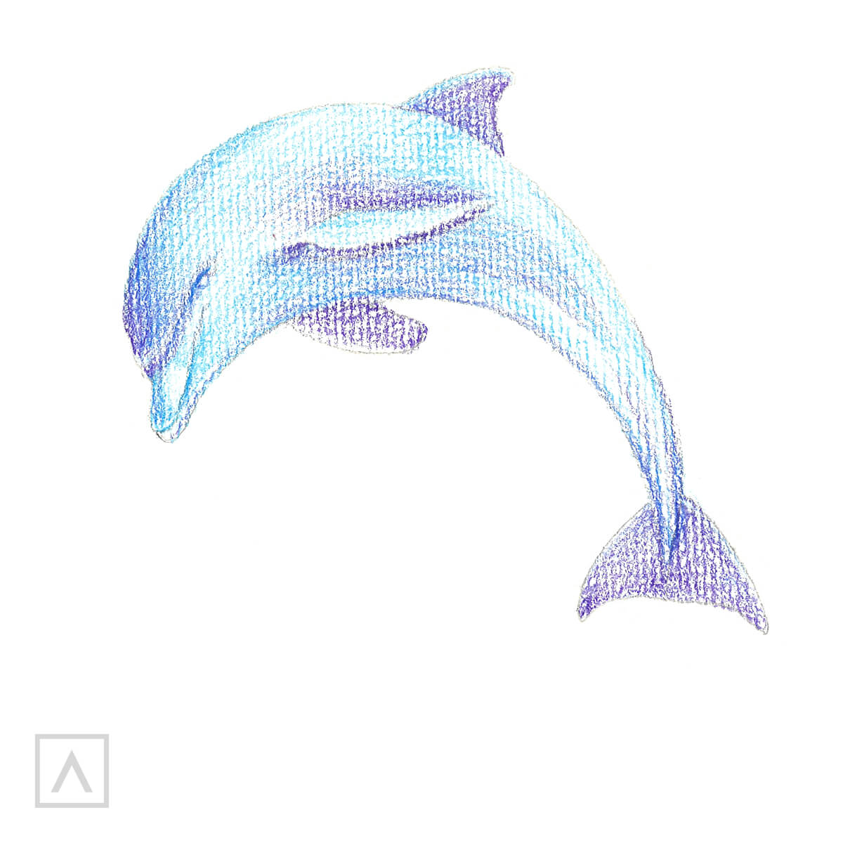 How to Draw a Dolphin - Step 4