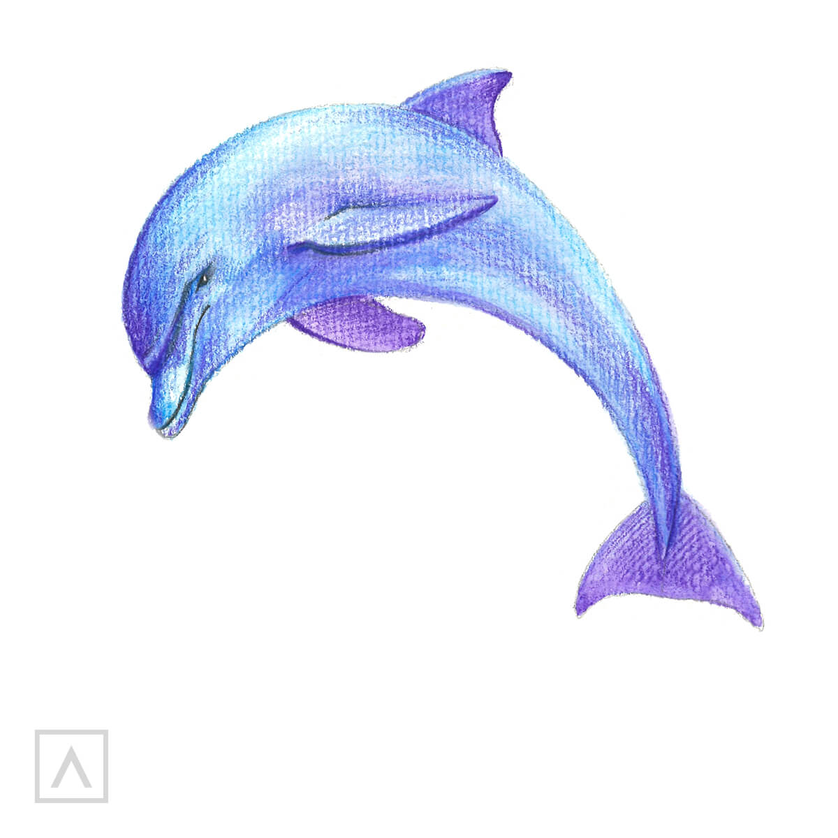 How to Draw a Dolphin - Step 6